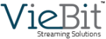 VieBit_Logo_color1